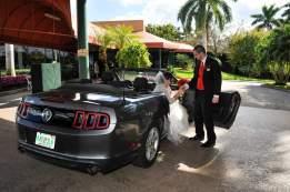 Mustang Christmas Red Wedding