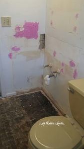 Guest Bathroom Remodel - Mrs. Dessert Monster